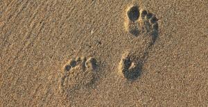footprint-2353510_1920